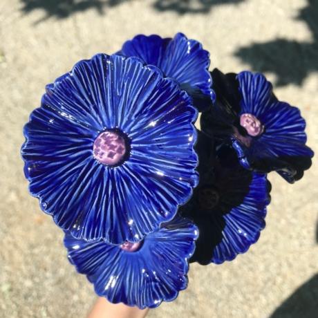 Nagy búzavirág csokor (5 szál)