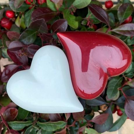Szív a szívnek csomag (2 db)